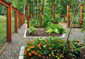 sade bahçe düzenlemesi